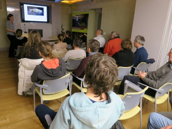 Številčno občinstvo (foto: Darja Kranjc)